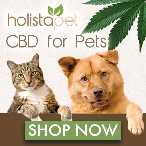 holista pet cbd for pets