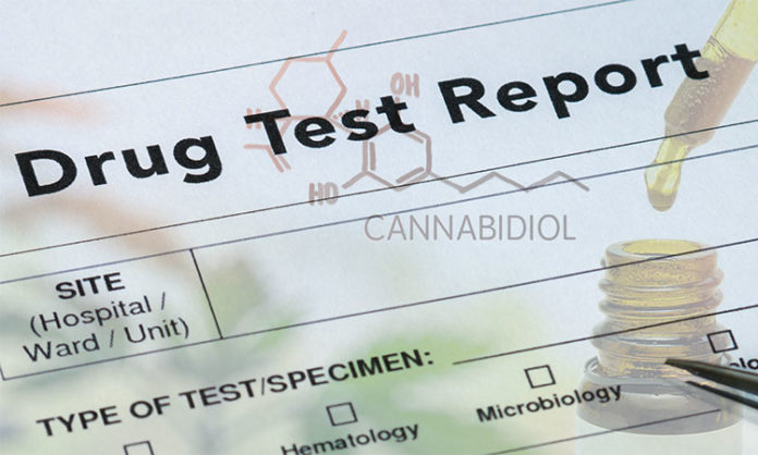 CBD oil show up in a drug test